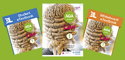 AQA A-level Law Year 1/AS