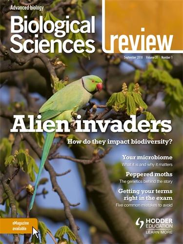 biological sciences review magazine volume 31 2018 19 hodder education rh hoddereducation co uk modern biology study guide answer key 1-2 modern biology study guide answer key 18-1